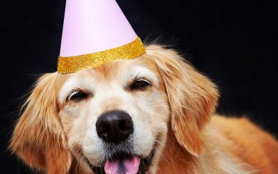 Golden Celebration!